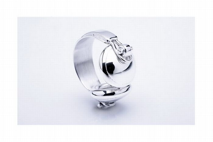 1271881471_music_theme_silver_jewelry_05 (700x467, 22Kb)