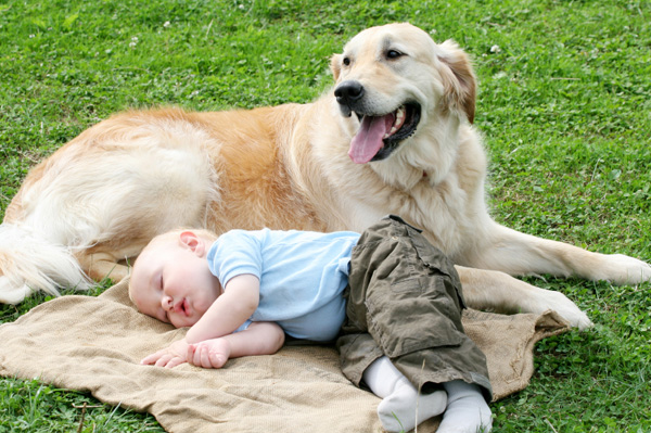dog-and-baby (600x399, 142Kb)