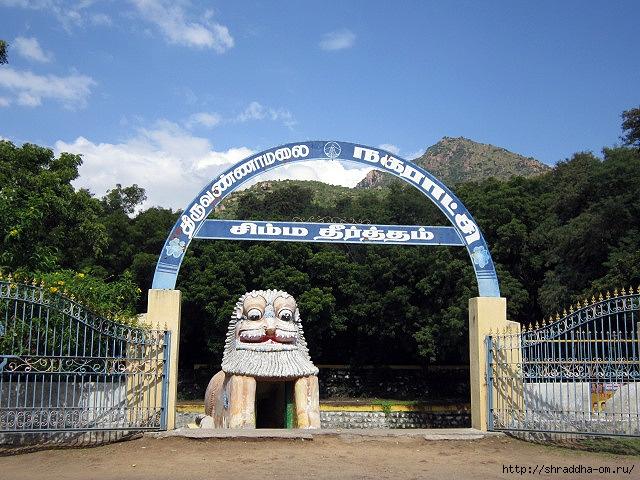 Индия, Тируваннамалай, 2012, 56 (640x480, 281Kb)