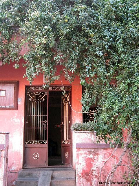 Индия, Тируваннамалай, 2012, 68 (480x640, 387Kb)