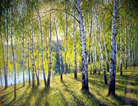 Березовый лес (540x416, 143Kb)