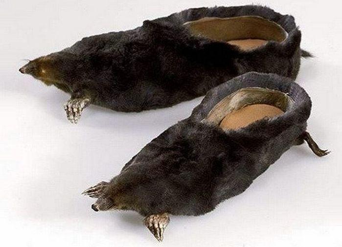 Смешная обувь со всего света 9 (700x506, 46Kb)