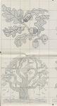 Превью 194 (380x700, 151Kb)