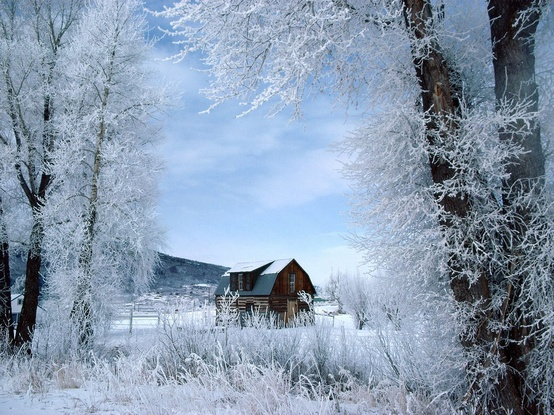 снег1 (554x415, 126Kb)