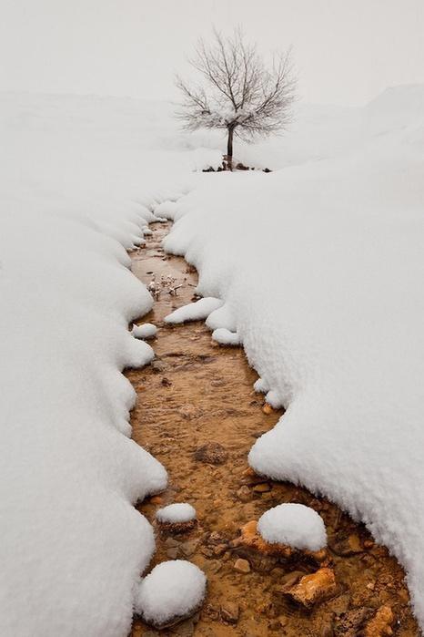 снег5 (466x700, 92Kb)