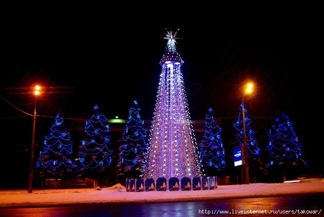 Владимир/1358798342_IMGP8513 (650x435, 137Kb)