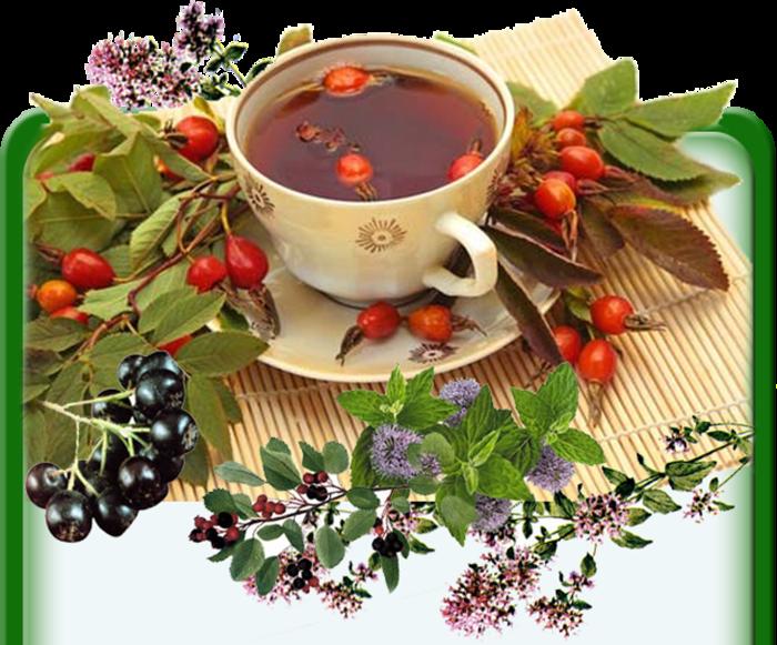 Крем от растяжек 150мл N1 Цены в аптеках Казани