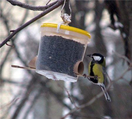 Для сельскохозяйственной птицы