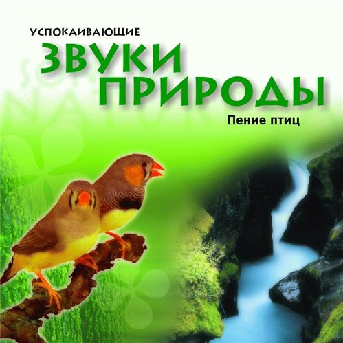 Птицы-наши целители.