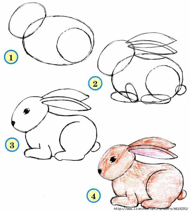 поэтапно нарисовать зайца.