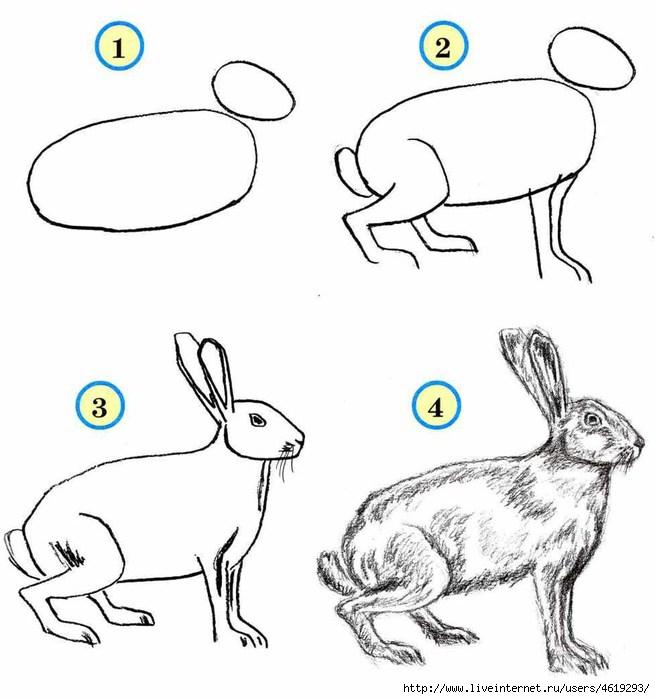 А ещё зайца можно нарисовать