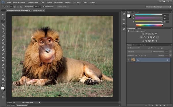 Где посмотреть/скачать бесплатно видео уроки Photoshop