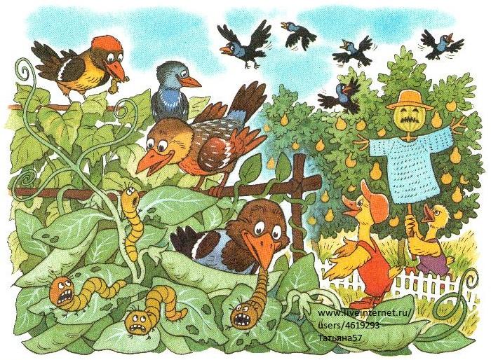 рисунки урожай: