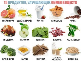 5087732_obmen_veshestv (320x240, 25Kb)