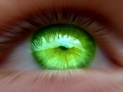 green-eyed-monster (500x375, 73Kb)