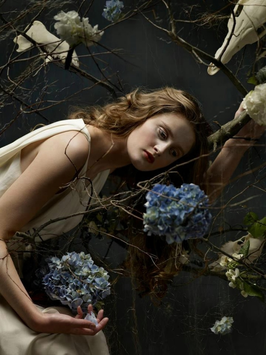 Helen Sobiralski фотографии в стиле барокко 1 (525x700, 238Kb)