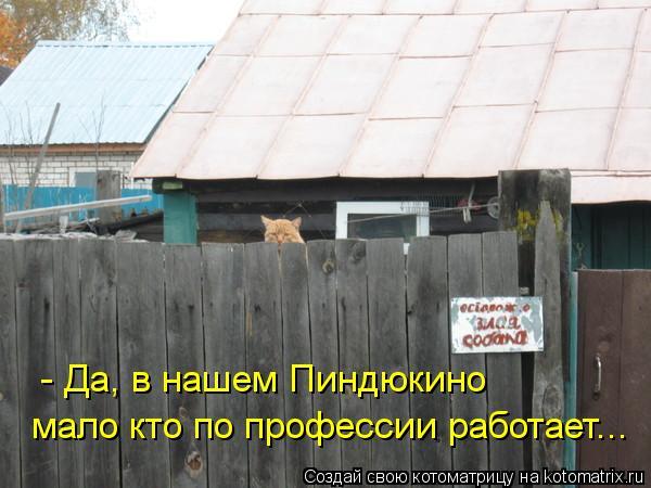 kotomatritsa_Cx (600x450, 46Kb)