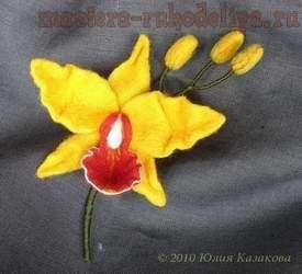 Мастер-класс по валянию на каркасе орхидеи 38606