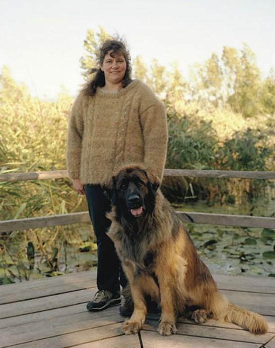 одежда из собачьей шерсти 6 (554x700, 85Kb)