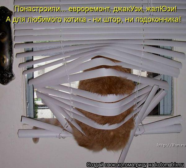 kotomatritsa_rV (600x540, 56Kb)