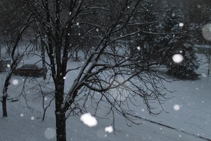 Зимой (700x467, 169Kb)