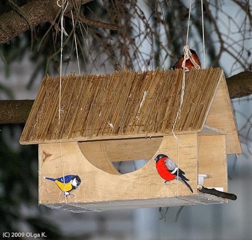 Скоро зима...можно внести свою скромную помощь в птичий мир.  Здесь кормушки на любой вкус и цвет.