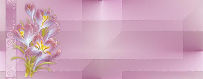 v1 (2) (700x273, 36Kb)