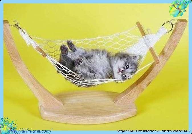 Гамачок для кошки