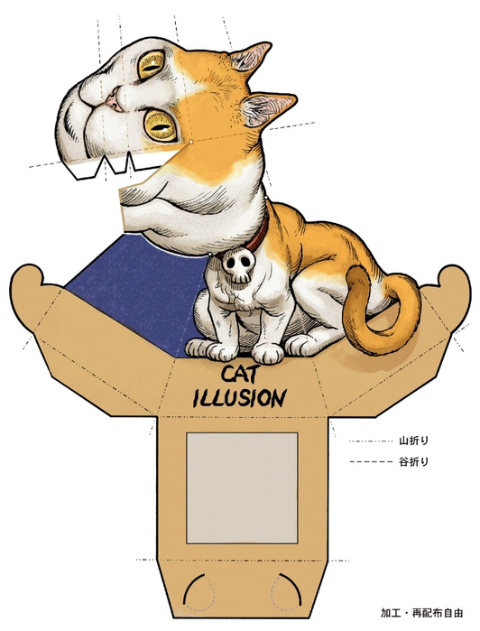 cat_illusion (532x700, 170Kb)