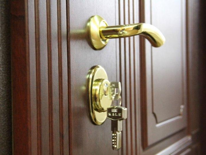 Как сделать входную металлическую дверь привлекательнее и практичнее.
