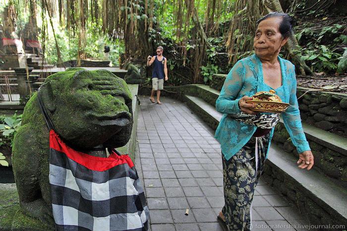 8. В этом лесу два храма, где балийцы поклоняются обезьянам. А по всей территории расставлены их фигурки (700x466, 107Kb)