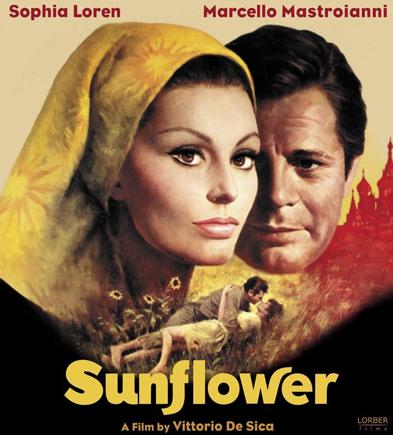 sunflower (393x435, 352Kb)