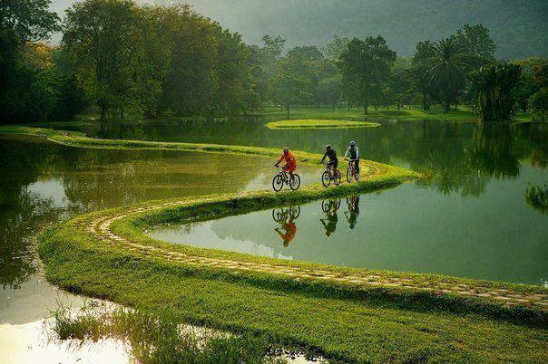 Малайзия. Озеро Тайпинг (604x402, 58Kb)