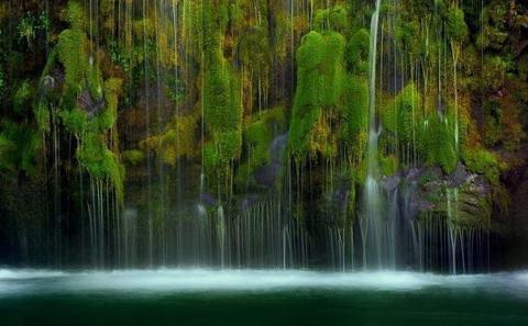 Mossbrae - уникальный водопад. Вода льется каскадом вниз по мшистым стенам каньона в реку Сакраменто (480x297, 25Kb)