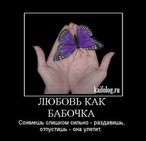 1265705057_125 (500x482, 30Kb)