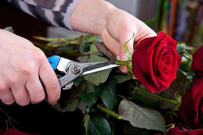 сердце из клубники и роз (3) (700x464, 41Kb)