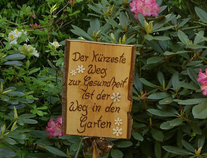 Рододендроновый парк-Westerstede Rhododendronpark. 96187