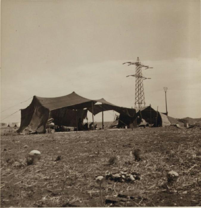 17 Подножье Кармеля. Контрасты. Палатки поселенцев и электрическая линия высокой мощности. 6 июля (675x700, 278Kb)