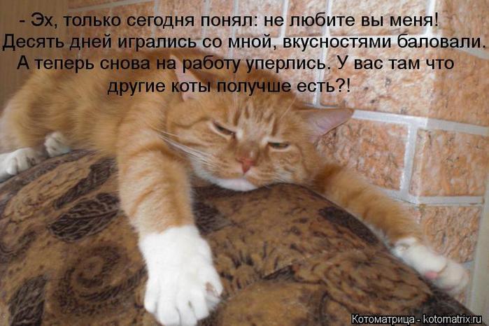 kotomatritsa_LZ (700x466, 58Kb)