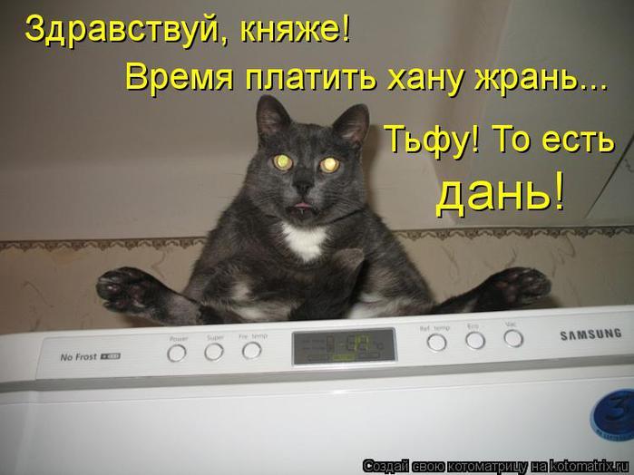kotomatritsa_qH (700x524, 44Kb)