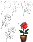 Превью rosa (480x615, 108Kb)