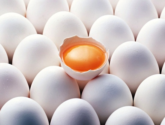 3085196_egg (550x416, 48Kb)