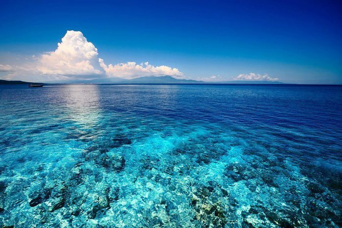 Море у острова Сулавеси, Индонезия (700x466, 85Kb)