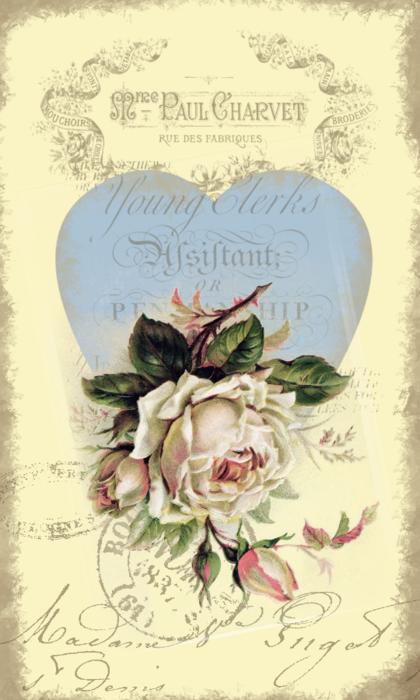pail pink rose paper (420x700, 411Kb)