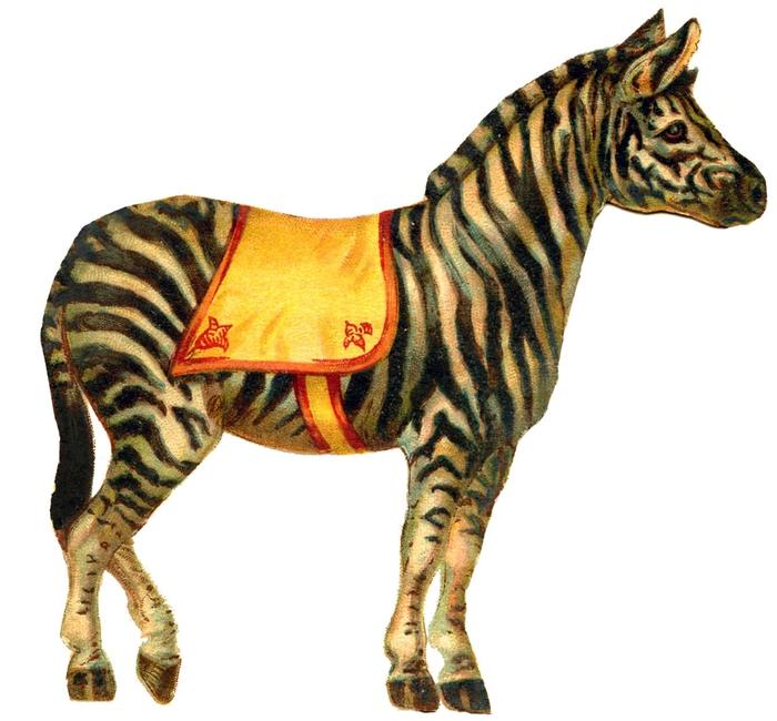 circus zebra GraphicsFairy003 (700x650, 210Kb)