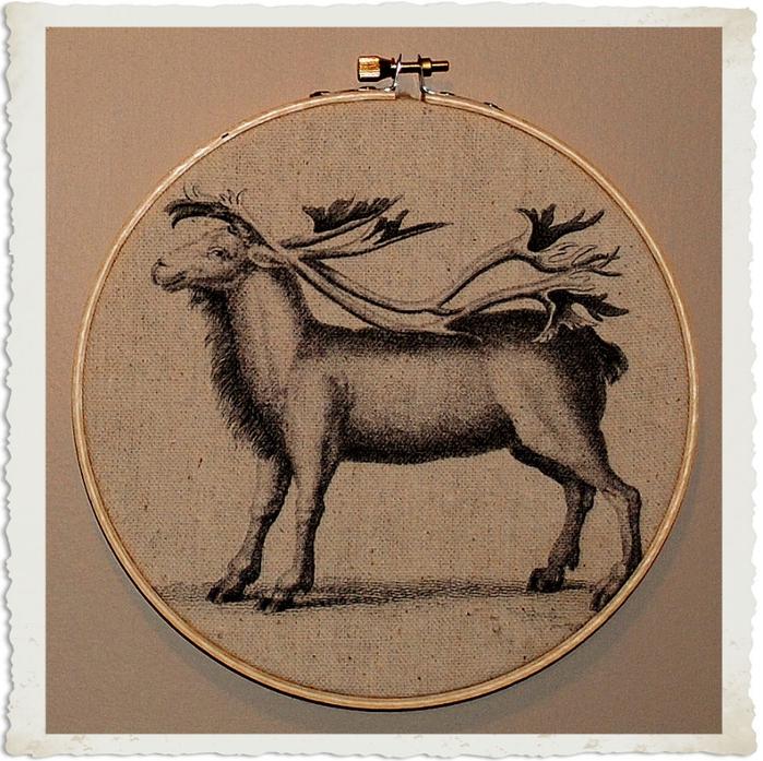 reindeer2frb (700x697, 399Kb)
