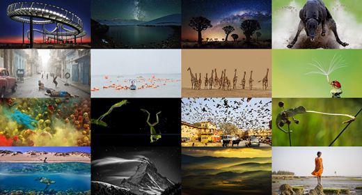 Лучшие снимки конкурса Sony 2013