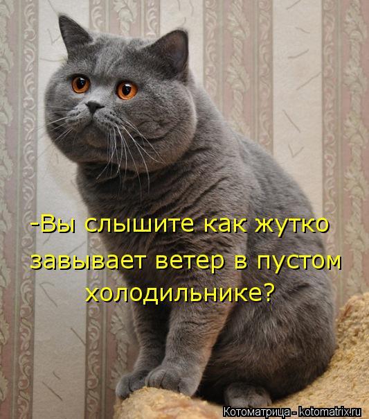 kotomatritsa_4A (533x604, 61Kb)