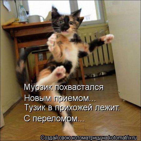 kotomatritsa_kO (450x450, 39Kb)