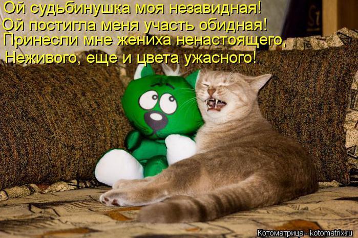 kotomatritsa_np (700x466, 85Kb)